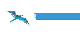 Learning Bird logo